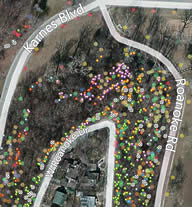 The Roanoke Park Tree Inventory on ArcGIS.com: http://tinyurl.com/RP-Trees-2012 Click above to see how it works, then go try it yourself.