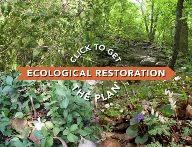Click to get the Master Plan Progress Report and Ecological Restoration Master Plan