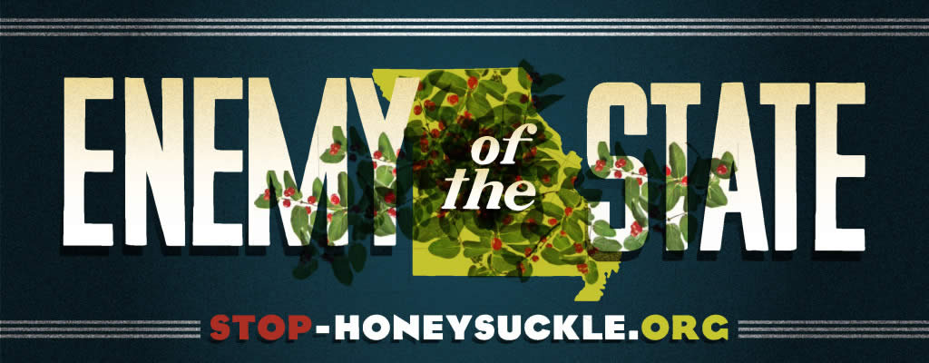 Bush Honeysuckle: Enemy of the State