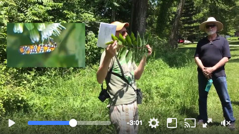 2016 05 21 Tree Walk with Powell Gardens